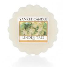 Yankee-Candle-Linden-Tree-wosk-zapachowy-drogeria-internetowa-puderek.com.pl