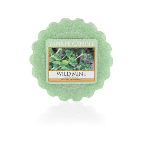 Yankee-Candle-Wild-Mint-wosk-zapachowy-drogeria-internetowa-puderek.com.pl