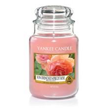 Yankee Candle Sun-Drenched Apricot Rose słoik duży świeca zapachowa