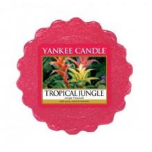 Yankee-Candle-Tropical-Jungle-wosk-zapachowy-drogeria-internetowa-puderek.com.pl