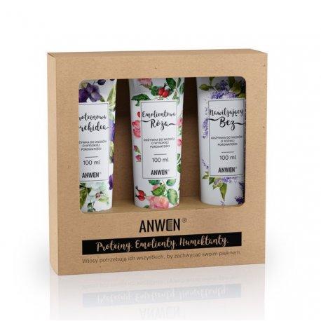 Anwen - Zestaw odżywek do włosów o wysokiej porowatości 3x100ml