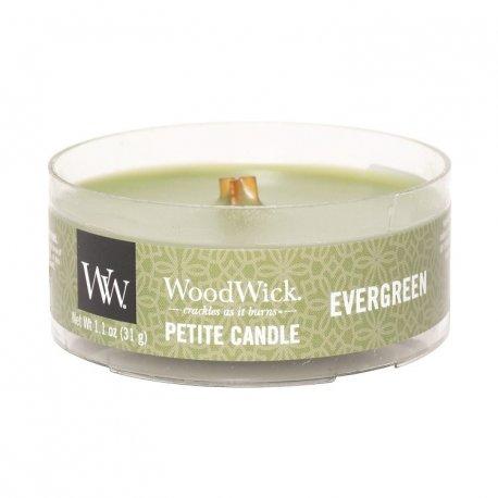 Woodwick Petite Evergreen - świeca zapachowa