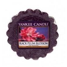 Yankee Candle Black Plum Blossom wosk zapachowy